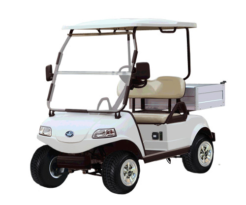 mobile golf cart battery replacement sunshine coast